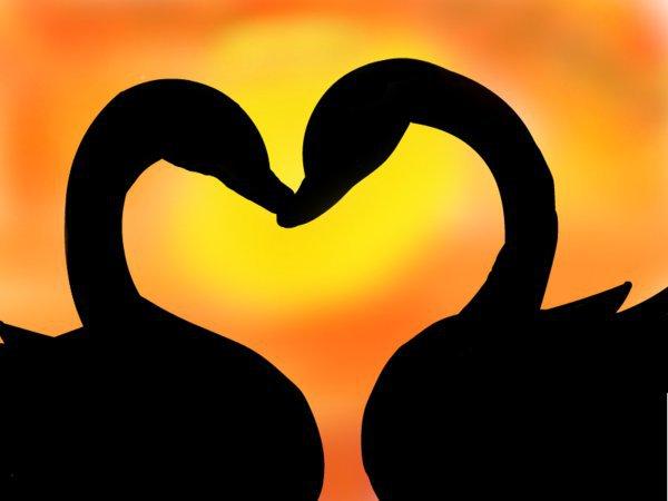Prawdziwa miłość nigdy nie wygasa...